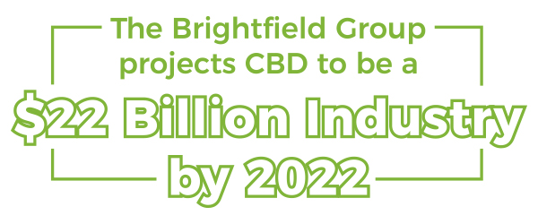 $22 Billion Industry by 2022