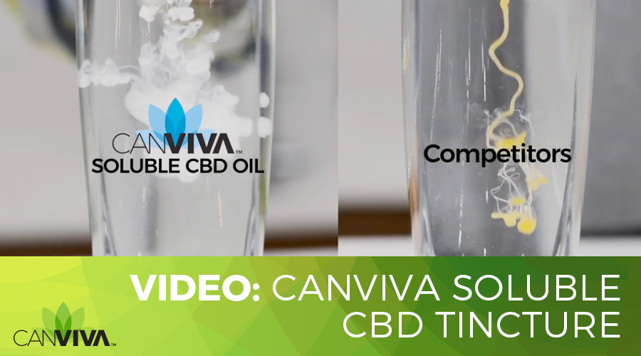 CANVIVA SOLUBLE CBD Tincture