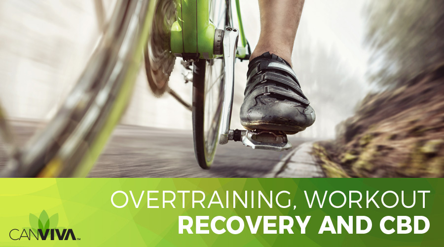 Overtraining, Workout Recovery and CBD