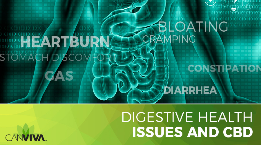 Digestive Health Issues and CBD