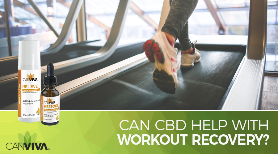 Blog Header: Can CBD Help Your Workout Recovery?
